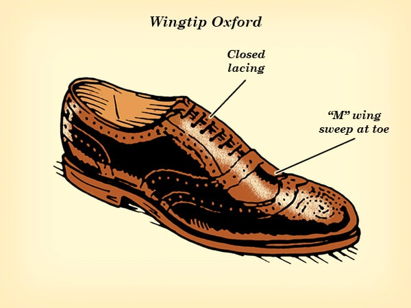wingtip oxford dress shoe illustration